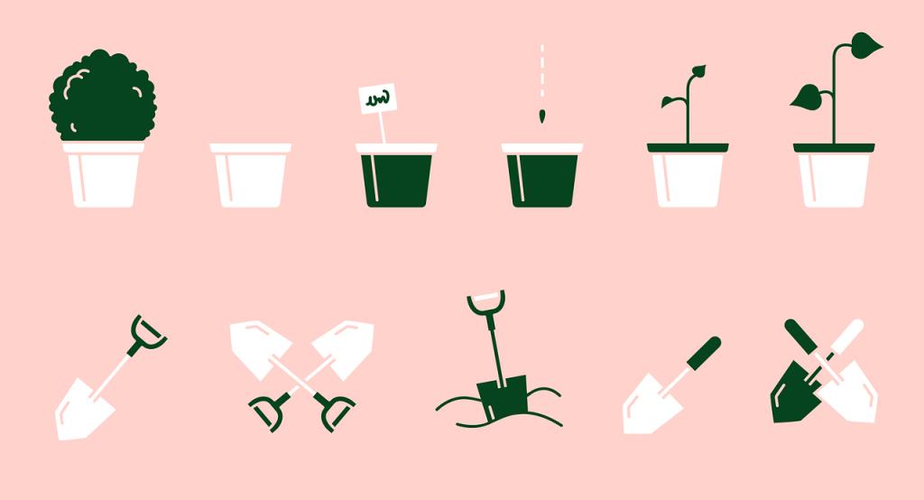 Permaculture : Étape 5 – C'est le moment de planter.